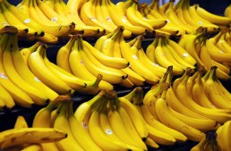 A Banana Diet? Really?