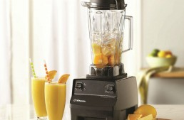 Vitamix TurboBlend Review